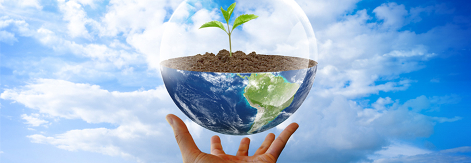 We provide effective, ecologically responsible pest management solutions